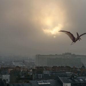Les hérons du CHU volent vers la Bretagne